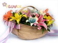 Basket of Assorted Lilies