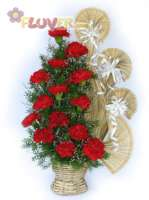 An Arrangement of Red Carnations