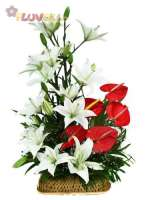 White Lilies and Anthuriums