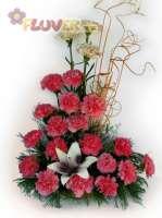 An Arrangement of Carnations