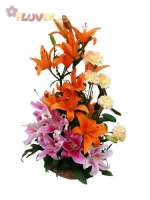 Tropical Lilies and Carnations