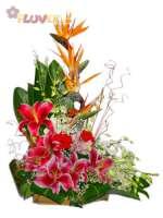 An Arrangement of Tropical Flowers