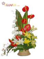An Arrangement of Lilies, Carnations and Anthuriums