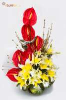 Assorted Lilies and Anthuriums.
